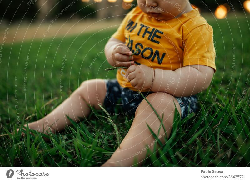 Baby child playing with grass Caucasian 0 - 12 months Child Children's game childhood Playing Summer Summer vacation outdoors Colour photo Human being Infancy