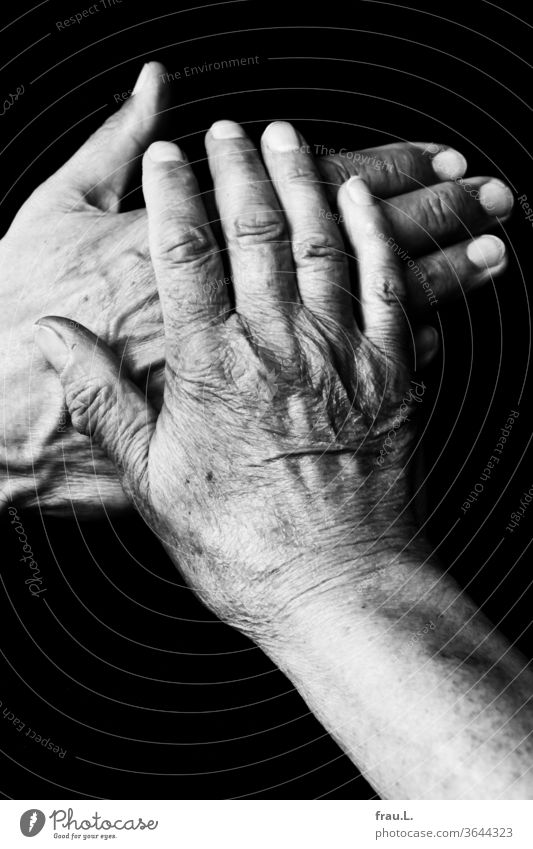 He put his hand on her heart and promised she believed him. Man by hand shirt T-shirt Old wrinkled Veins Woman Married couple Couple hands