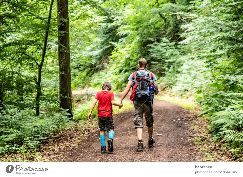 be in common hikers Lanes & trails Together Environment Exterior shot Nature Summer Son Father Hiking Man Child Boy (child) Parents Family & Relations Love