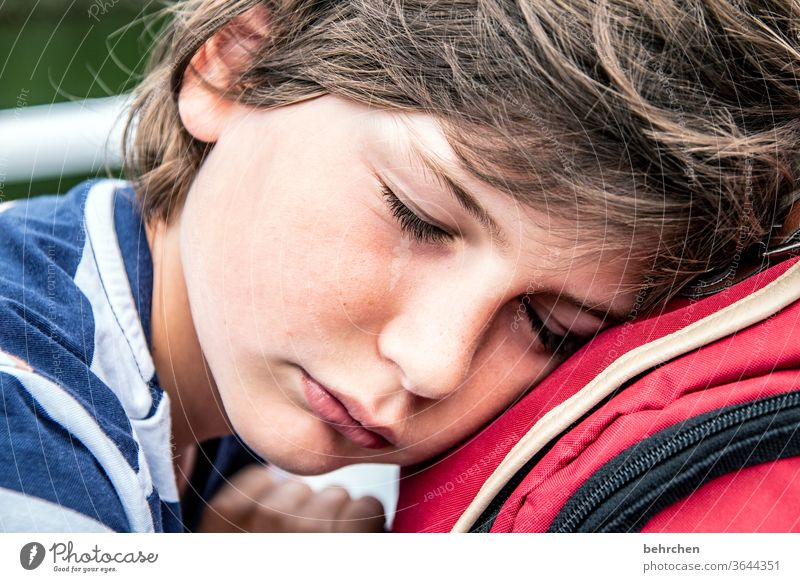 vital | sleep Dream Family & Relations Colour photo Close-up portrait Contrast Light Day Face Infancy Boy (child) Child Sunlight Contentment fortunate pretty