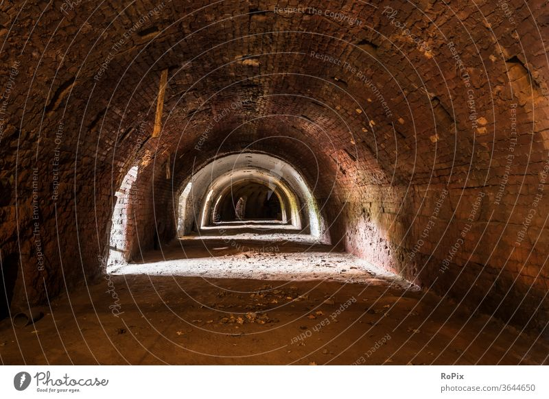 Combustion chamber of a ring kiln in an old brickyard. Vault Park Garden arches abbey built Church columns Gothic period Gothic style Architecture