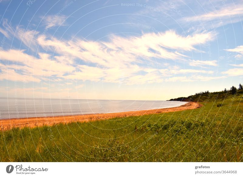 Red Cove Green Land Prince Edward Island Canada Iceland P.E.I. Exterior shot Colour photo Nature Landscape Day Environment natural Ocean Bay Blue farsightedness