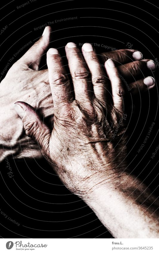 He put his hand on her heart and promised that she believed him in color. Man by hand shirt T-shirt Old wrinkled Veins Woman Married couple Couple hands