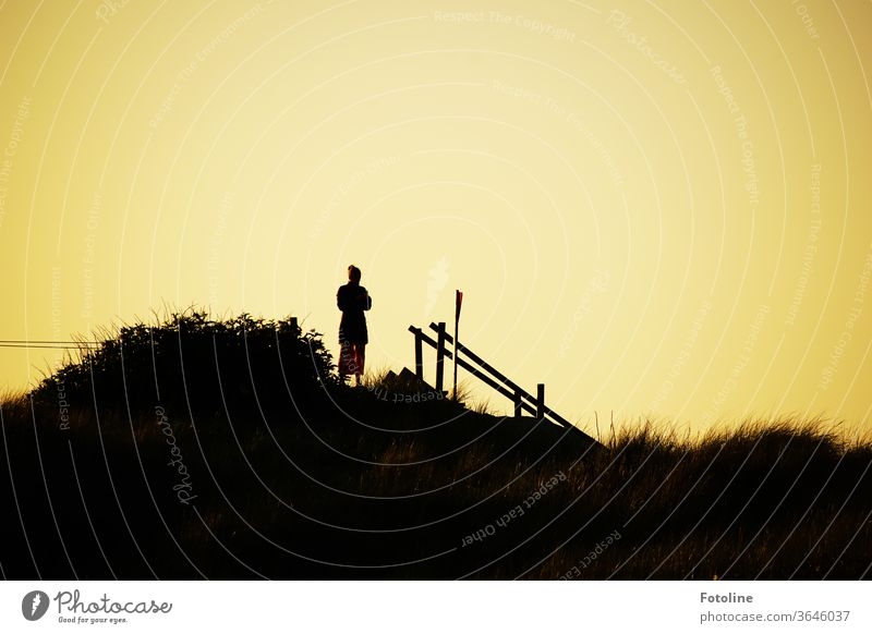 Post something on Instagram as the sun goes down - or a young woman stands on a dune in the sunset and checks her mobile phone Sunset Helgoland Woman Handrail