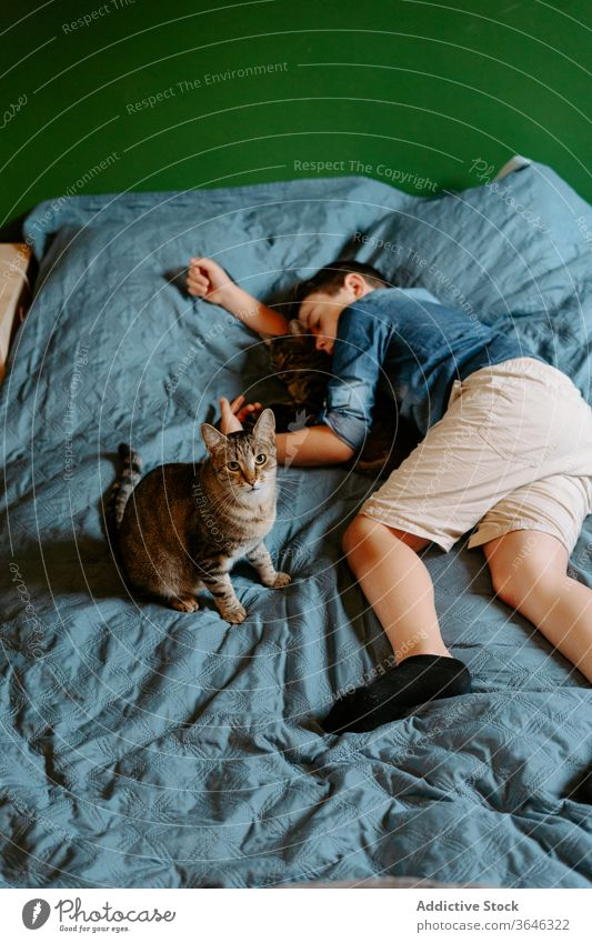 Tired boy and cat sleeping on bed peaceful nap cute casual together daytime hug comfort sweet relax adorable gray cozy lying calm serene tender care eyes closed