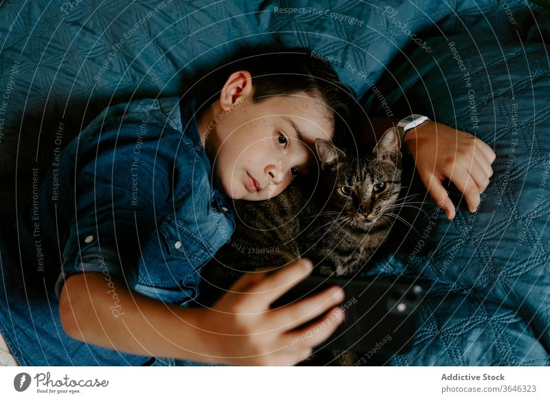 Little boy and cat taking selfie with mobile phone on bed smartphone cute casual photo together hug comfort sweet relax adorable gray cozy lying using device