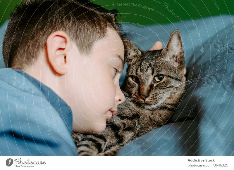 Little boy and cat taking selfie with mobile phone on bed cute casual together hug comfort sweet relax adorable gray cozy lying calm serene tender care domestic