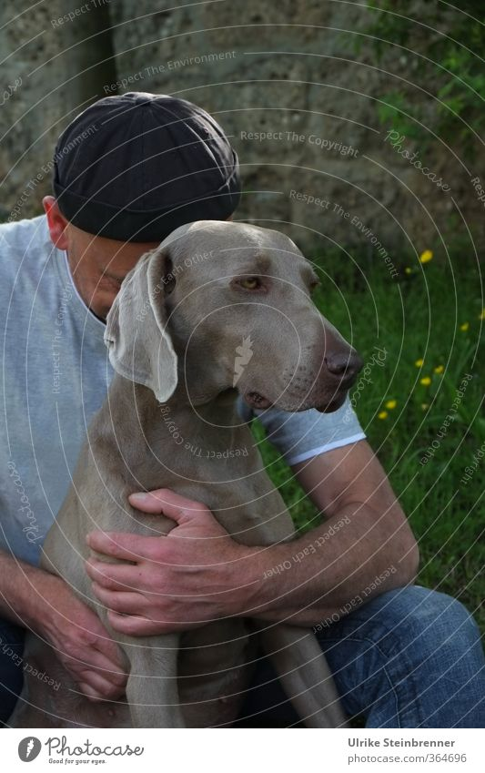 Dog Human being Man Animal Adults Love Life Sadness Dream Friendship Moody Together Masculine Power 45 - 60 years To enjoy