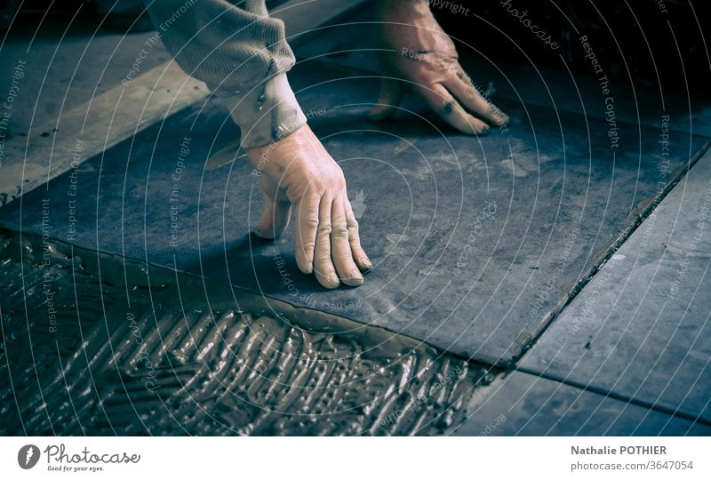 Laying tiles on the floor tiling laying craftsman DIY glue work Work and employment Colour photo diy construction Hand Close-up Man manual Repair