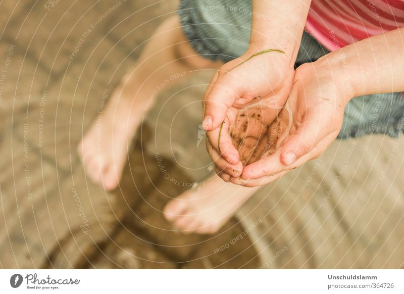 Human being Nature Water Summer Hand Joy Environment Life Emotions Playing Swimming & Bathing Natural Feet Moody Rain Health care