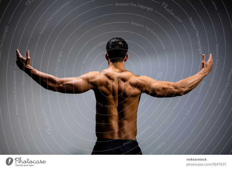 Male Fitness Model Back Muscles Nam Vo fitness model male Asian muscular muscles strength sport athletic studio shot human body physique torso shirtless posing