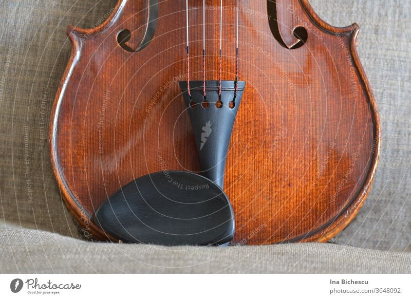The lower part of a violin body . You can see the chinrest and side support, parts from the sides and from the f-holes. The whole looks like a cat's head.