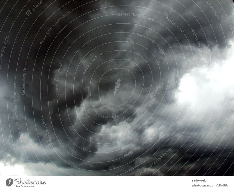 Emotions Rain Wind Gale - a Royalty Free Stock Photo from ...