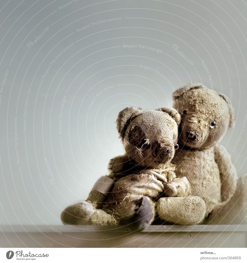 can grow old together and lean against each other - two old teddy bears Teddy bear 2 Old Sit Historic Broken Protection Safety (feeling of) Friendship Together