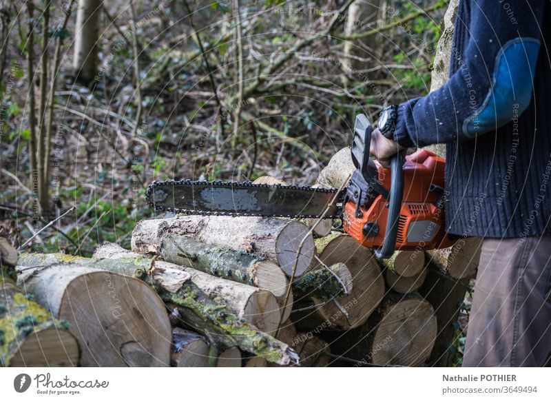 Kumberjack in the forest Lumberjack Forest logs pile of wood chainsaw tools outdoor nature blade stere heating Exterior shot tree Colour photo Nature Wood