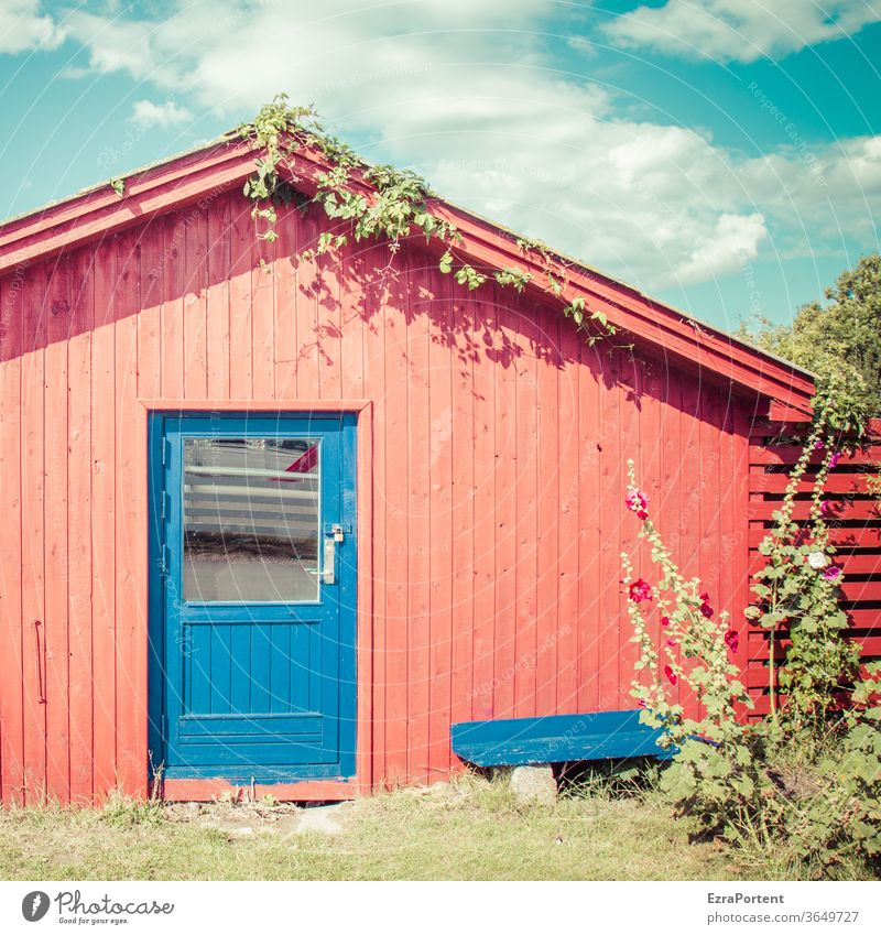 red hut, blue door House (Residential Structure) Hut Wood Summer Bench Sky Clouds Hollyhock Red Blue sunny