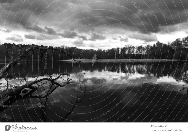 Unheildrohend | landscape with lake and dark clouds in black and white Black & white photo Bad weather Lake Lakeside reflection Reflection in the water