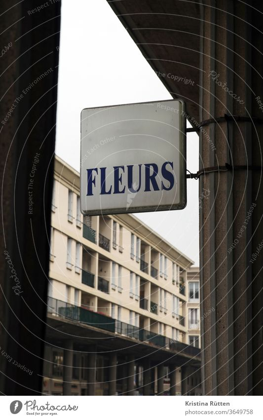 fleurs flowers sign publicity Advertising Billboard outdoor advertising Neon sign Flower shop flower shop florist Floristry Architecture built Facade Column