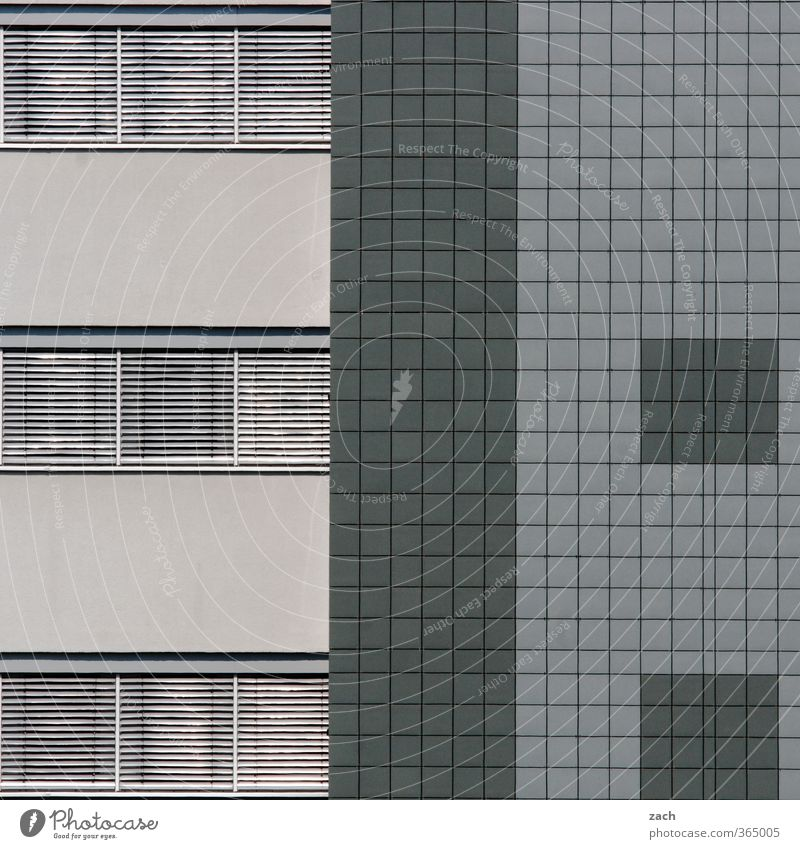 City House (Residential Structure) Window Wall (building) Architecture Wall (barrier) Building Gray Line Office Facade Living or residing Modern Concrete Tile