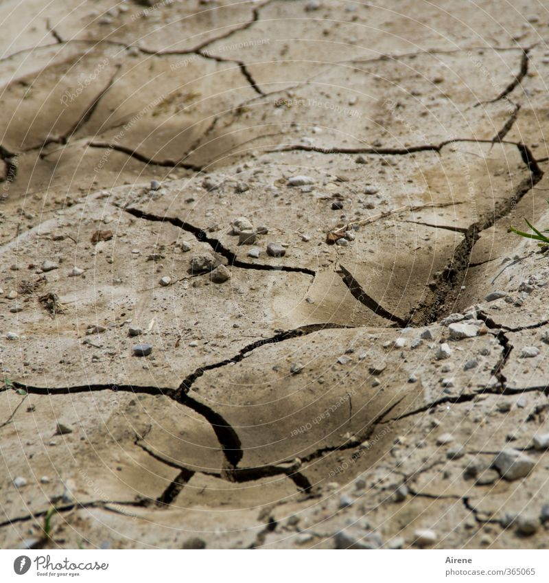 AST6 Inntal, stop with the water! Environment Nature Landscape Elements Earth Summer Climate Climate change Weather Drought Line Dry Brown Black Chaos