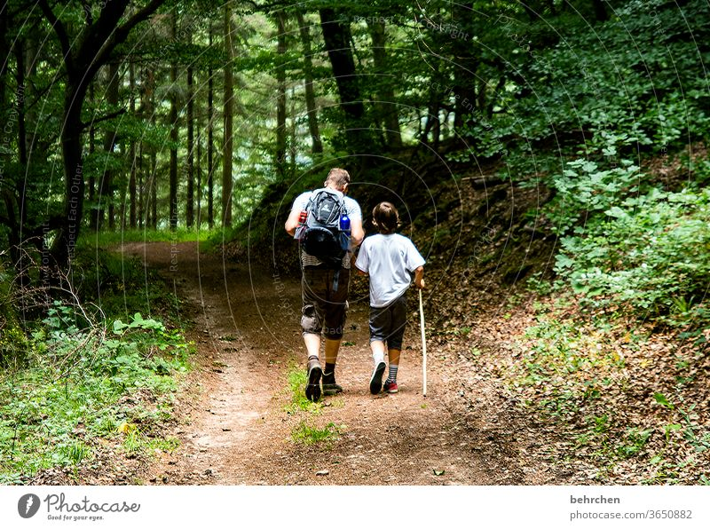 dynamic | wandering Hold hands Forest Vacation & Travel Love Family & Relations Summer Son Father Hiking Man Child Boy (child) Parents Nature Exterior shot