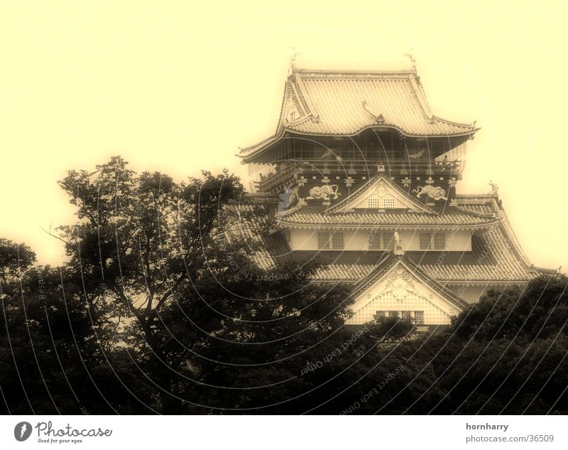 House (Residential Structure) Architecture Roof Castle Japan Temple Pagoda Osaka