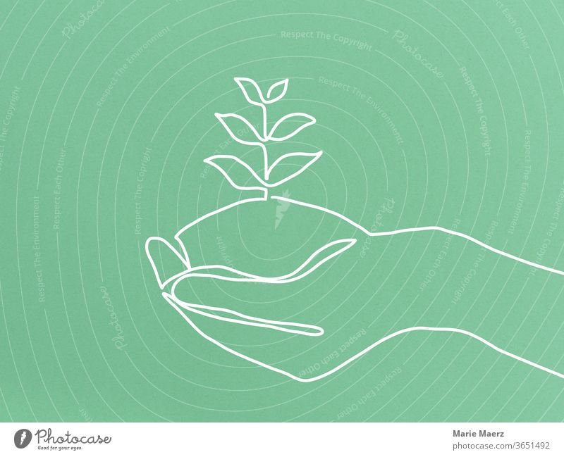 Sustainable growth - line drawing of a hand in which a plant grows Sustainability wax Growth Nature green Plant natural Environment Close-up Positive patience