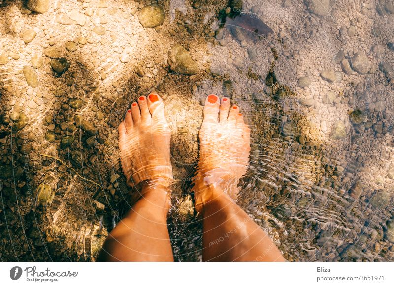 Standing with bare feet in the cold water of a stream. Summer. Water sunshine Brook Naked Refreshment bathe Sun Light River Wet Nature Cold Swimming & Bathing
