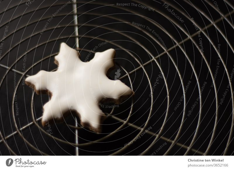 Symmetry | homemade Christmas cookie in the shape of a white snowflake lies in the middle of a cake grid Christmas cookies Christmas biscuit Snowflake glaze