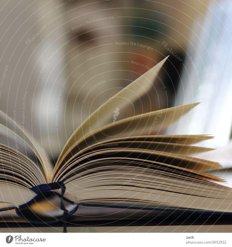 printed product | leaf fan Book Bookshop books pile of books bookshop Bookshelf Reading Reading matter Bookworm Education