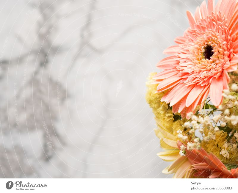 Yellow and pink gerbera daisy floral bouquet background funeral flowers marble greeting card layout yellow mothers day arrangement summer beautiful wedding