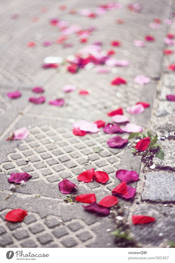 Rose Day. Art Esthetic Rose leaves Wedding Wedding anniversary Wedding ceremony Wedding party Street Red Pink Many Blur Colour photo Subdued colour