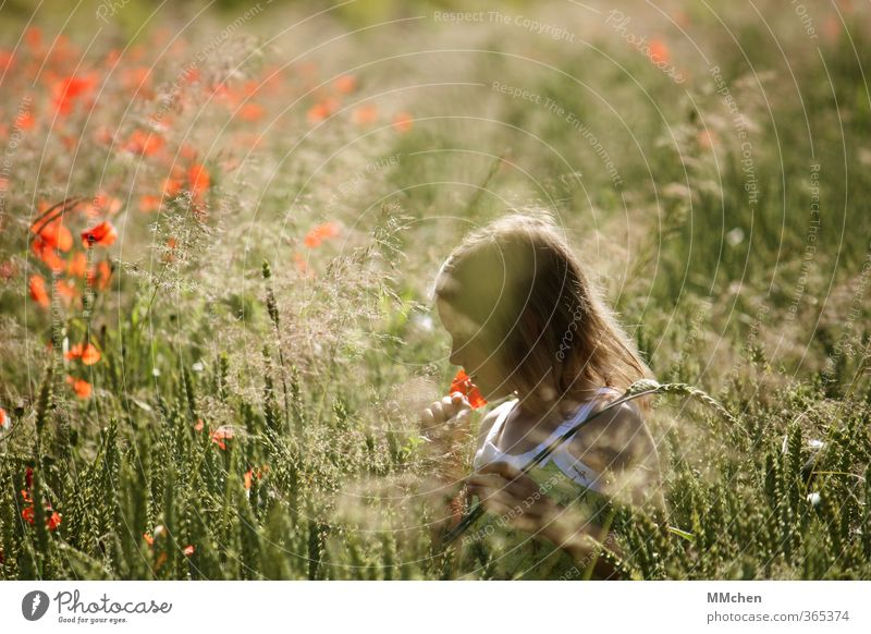 Human being Child Nature Relaxation Girl Joy Flower Meadow Playing Field Leisure and hobbies Infancy Contentment Hiking Trip Eternity