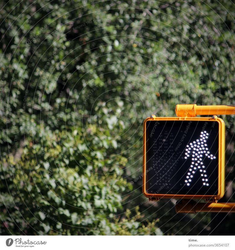 Traffic light man (Brooklyn version) Pedestrian crossing Pedestrian traffic light urban Nature tree bush vegetation Yellow Clue Rule Going stylized bent over
