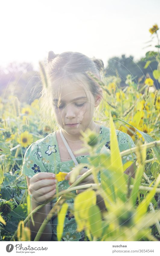 girl in a field of sunflowers | favorite person Child Summer sunshine warm Sunflowers Sunflower field Sunlight relaxation Freedom Nature natural Meadow Bright