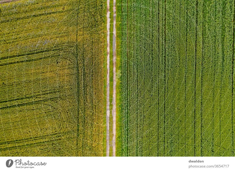 Field from above Agriculture aerial photograph Arable land drone plan Exterior shot Nature Colour photo Landscape Earth Deserted Environment Day Brown