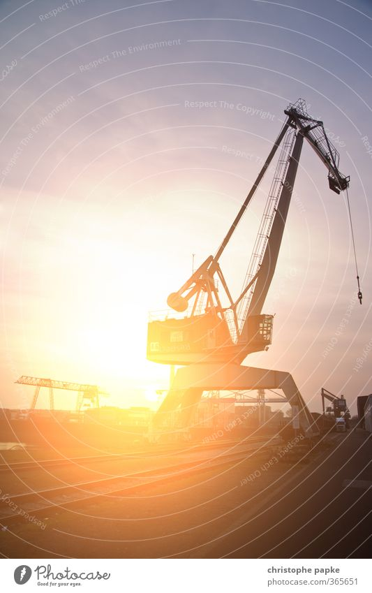 light dock Work and employment Crane Harbour Docker Construction site Economy Industry Logistics Machinery Sun Sunrise Sunset Summer Port City Navigation