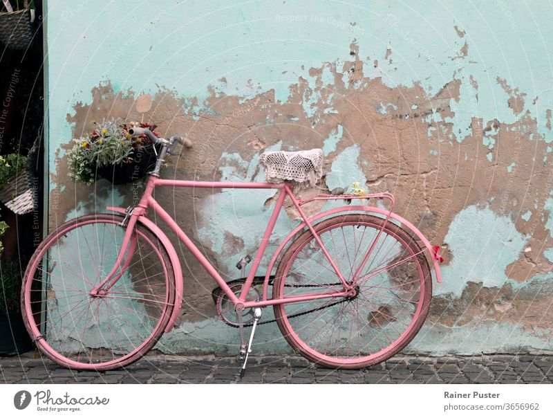 Vintage pink bicycle leaning against a wall in Havana, Cuba antique architecture bike classic cuba grunge havana old outdoor retro road rusty street summer