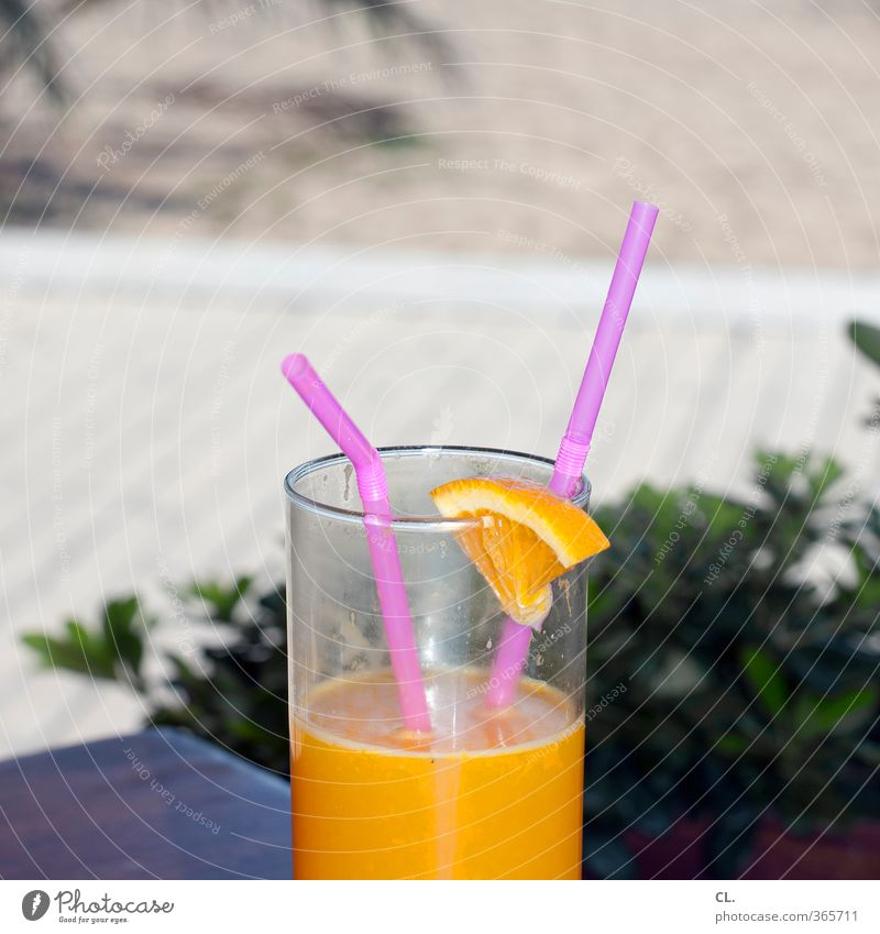 Vacation & Travel Summer Sun Relaxation Joy Beach Healthy Couple Together Leisure and hobbies Lifestyle Orange Glass Tourism Beautiful weather Trip