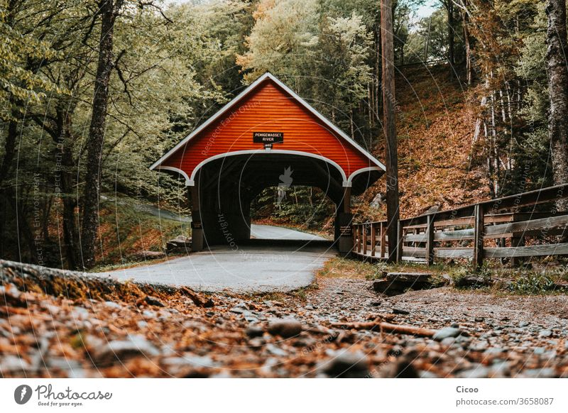 Red, covered bridge in autumn forest Forest Autumn Worm's-eye view Street Asphalt Hiking Roof Lanes & trails Fence wood leaves stones Nature Exterior shot