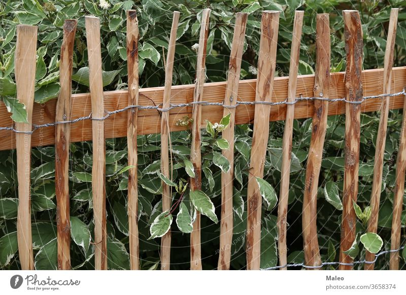 Wooden fence made of planed twisted wire branches background green natural nature rusty wooden adventure barb barbed bright country dangerous detail dirt dry