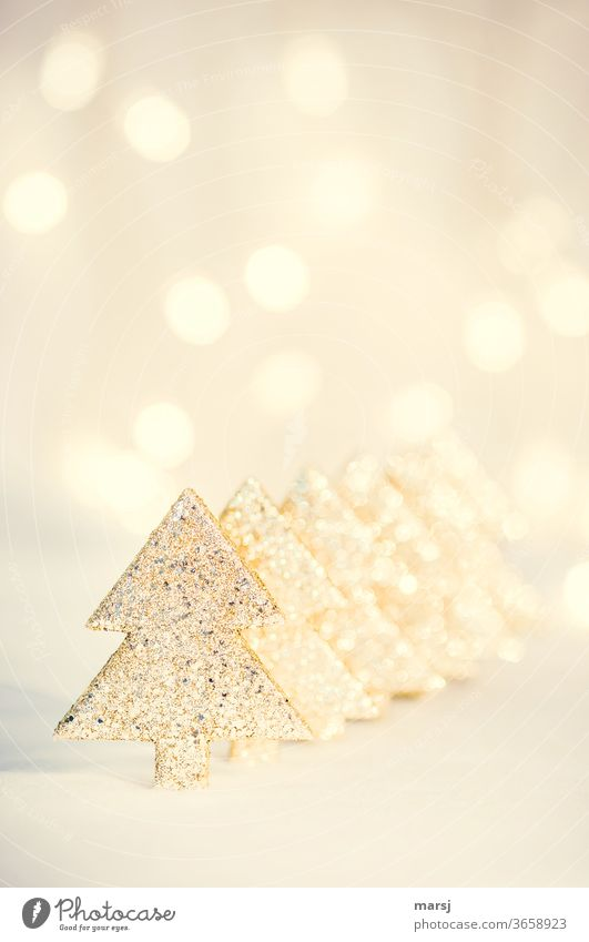 Golden Christmas trees in a row Christmas & Advent Christmas decoration speckled Kitsch Cliche Decoration Odds and ends Feasts & Celebrations Glittering