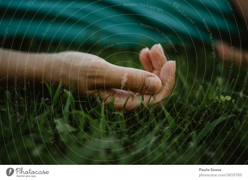 Close up hand on the grass Hand body part Close-up hands Fingers Human being Exterior shot Conceptual design Skin Minimalistic background Gesture people Body