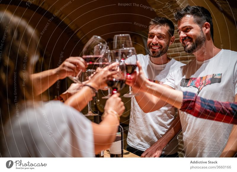 Cheerful friends clinking during wine tasting in winery red wine toast degustate drink cheerful happy fragrant enjoy wineglass modern delicious bottle tasty