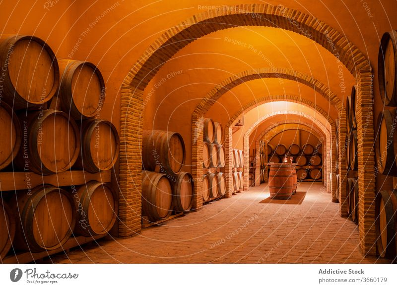 Wooden barrels with wine in modern winery spacious storage grapery interior production viticulture cozy small business design table wooden alcohol drink
