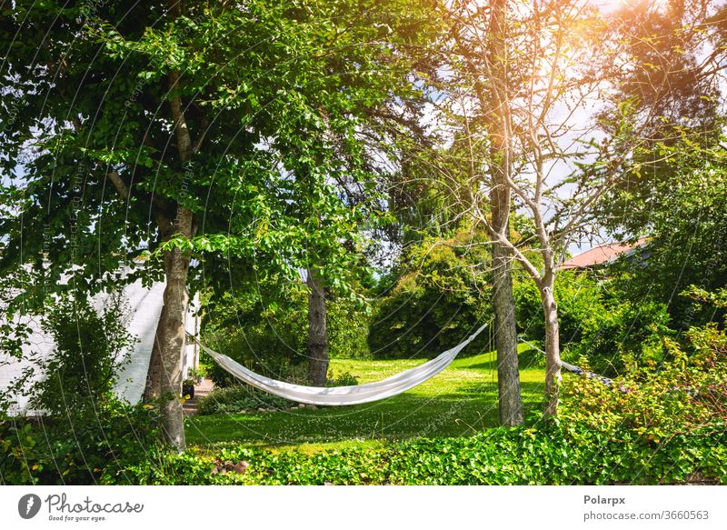 White hammock in a green garden foliage hanging nobody simple apple freedom backyard spring carefree white resort sunlight idyllic paradise season life leisure