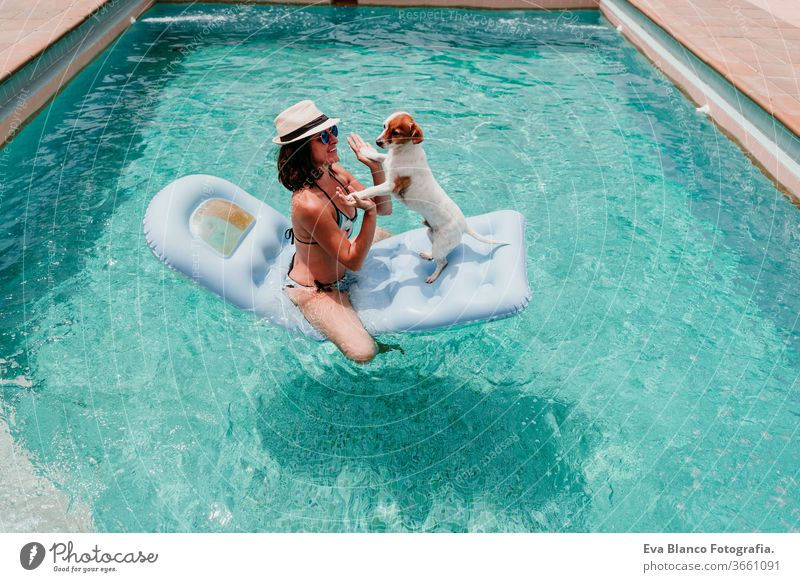 happy woman and dog in a pool having fun. dog sitting on inflatable and playing with owner. Summer time swimming pool blue water summer time love jack russell