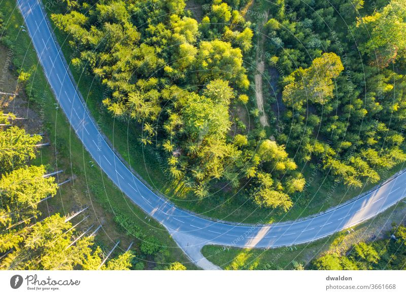 A view from above Forest country road drone Aerial photograph green Bird's-eye view Nature Colour photo Exterior shot Landscape tree Environment Summer Deserted