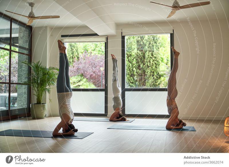 Group of female athletes performing Supported Headstand IV yoga asana women practice salamba sirsasana a upside down balance wellness healthy session studio