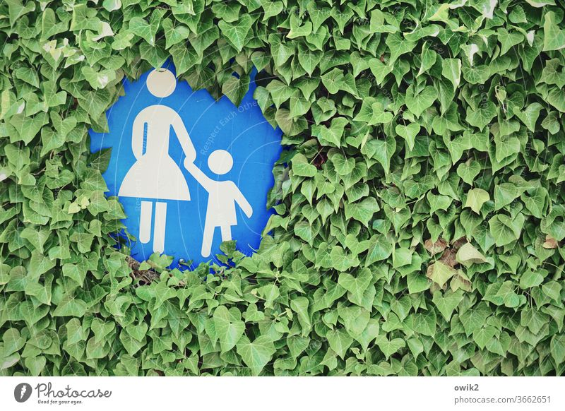 Mother-child circle Hedge leaves flora tight Road sign off Footpath pedestrian pedestrian shades traffic-calmed covert become overgrown Figures mother and child